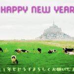 新年企画2つお届け!